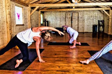 The power of an evolutionary yoga retreat