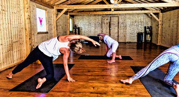 The power of an evolutionary yoga retreat